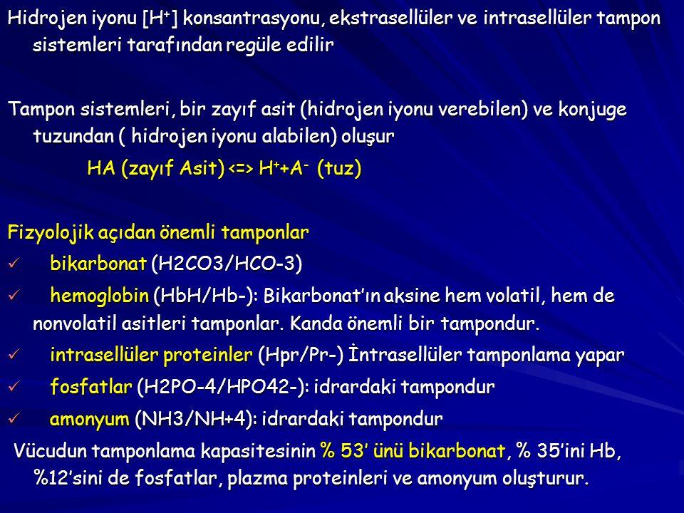 Hidrojen iyonu [H+] konsantrasyonu, ekstrasellüler ve intrasellüler tampon sistemleri tarafından regüle edilir